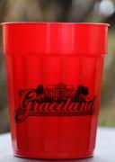 22nd Mar 2021 - Red souvenir cup