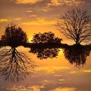 23rd Mar 2021 - Orange Sunset