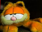 23rd Mar 2021 - Orange Garfield stuffed animal