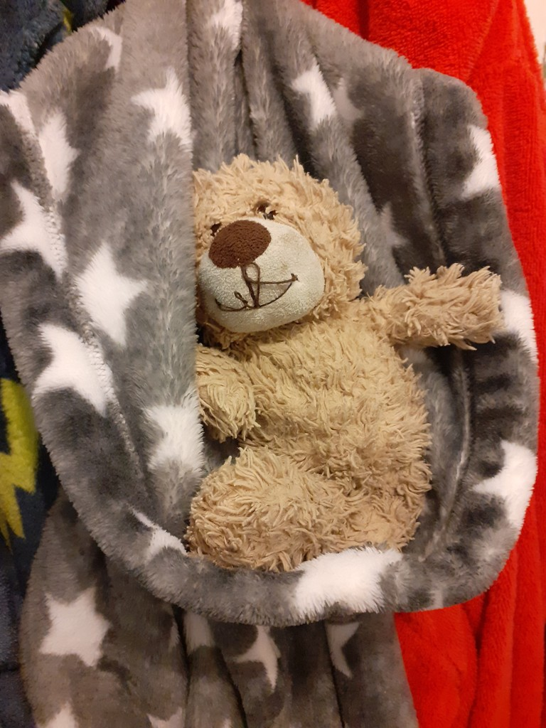 March 23rd - The Teddy in the Dressing Gown by newbank