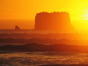 23rd Mar 2021 - sunset orange