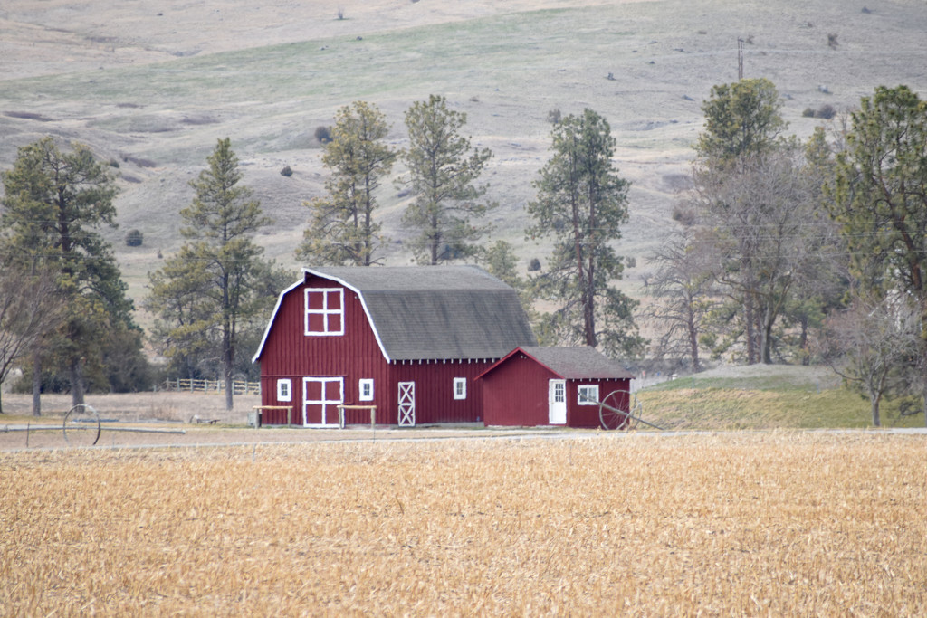 Well-Kept Barn by bjywamer