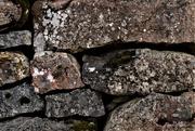 24th Mar 2021 - stone