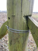 24th Mar 2021 - Smiley fence post