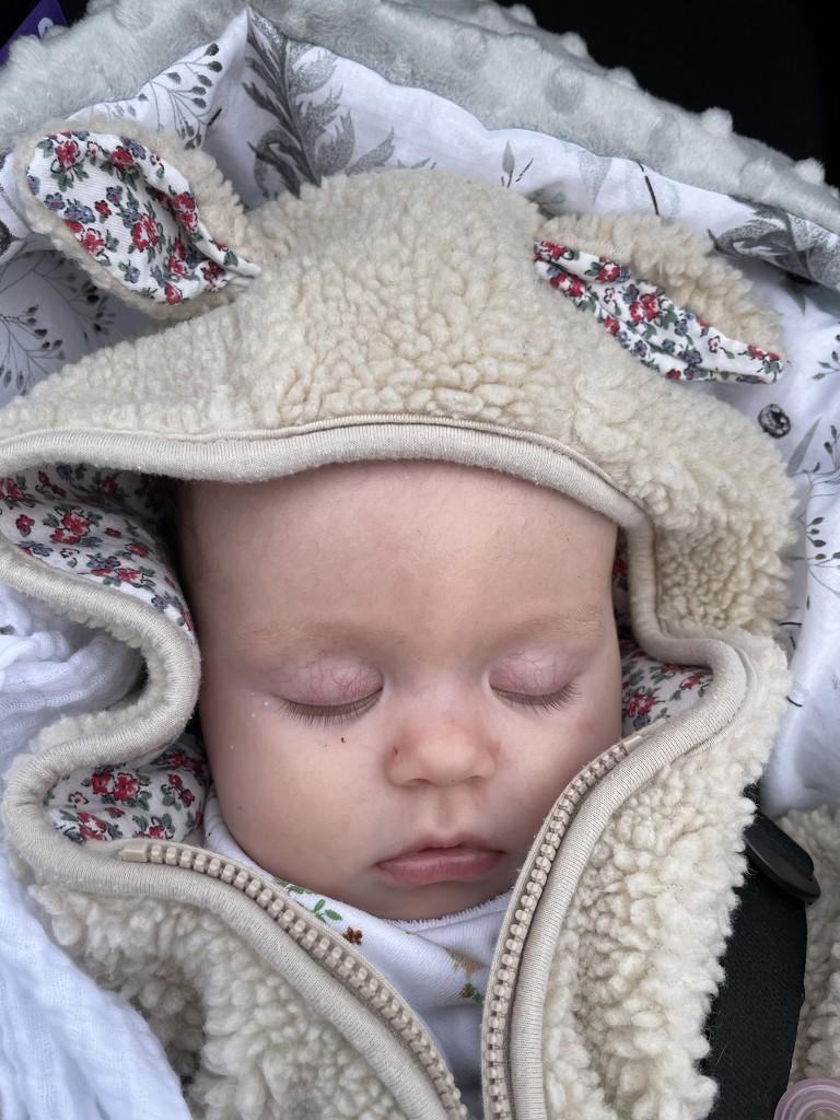 Sleepyhead  by denful