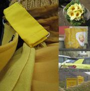 24th Mar 2021 - yellow