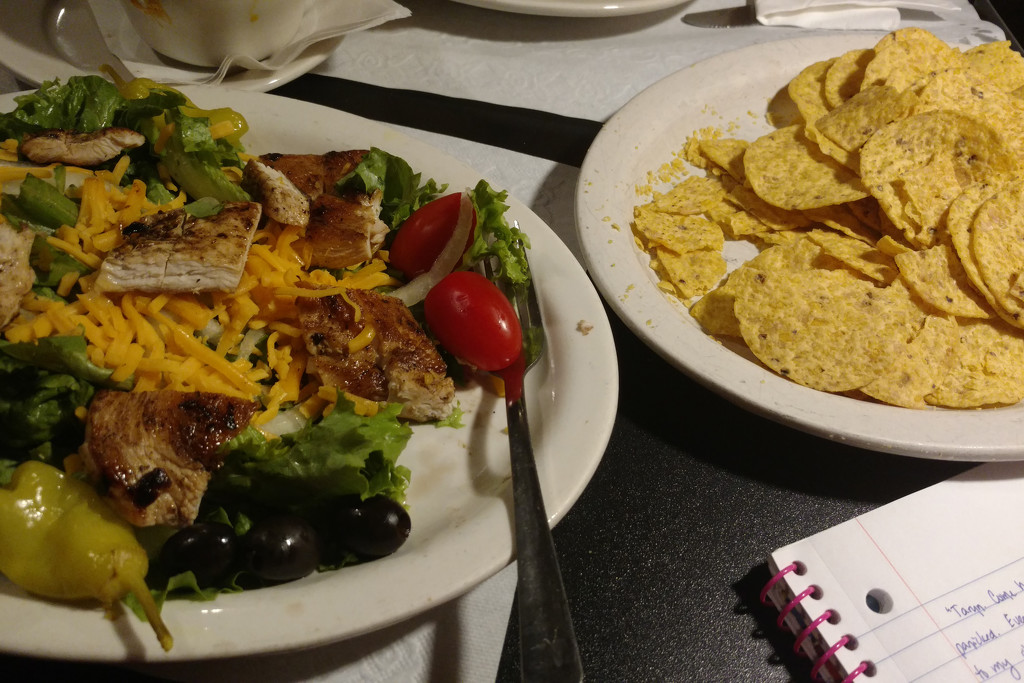 Dinner & Writing at the Cage by steelcityfox