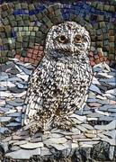 25th Mar 2021 - Owl Mosaic