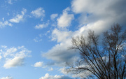 26th Mar 2021 - Blue sky with clouds
