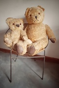 26th Mar 2021 - Old Teddies and Chair