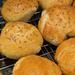 Homemade rolls [Filler]
