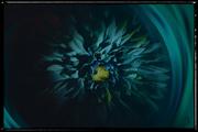 26th Mar 2021 - Swirls of Teal