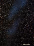 26th Mar 2021 - Stars or Raindrops