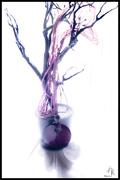 27th Mar 2021 - Purple Bangle