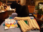 28th Mar 2021 - Cat and crochet and reading material.