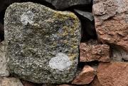 28th Mar 2021 - stone and lichen
