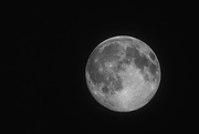 28th Mar 2021 - Full Worm Moon