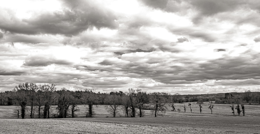Big Sky Country... by vignouse