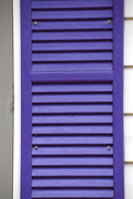 28th Mar 2021 - RAINBOW2021 - Purple Window Shutter