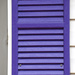 RAINBOW2021 - Purple Window Shutter