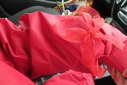29th Mar 2021 - raincoats and ribbons