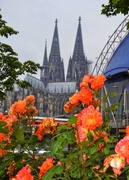 30th Mar 2021 - The Cologne Cathedral
