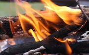 30th Mar 2021 - Orange flames
