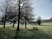 30th Mar 2021 - Misty morning at Kedleston Hall