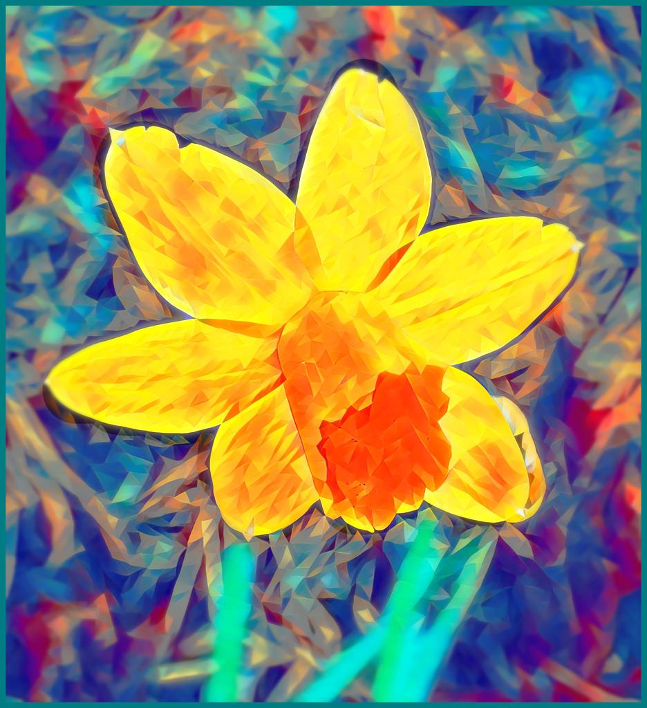 Daffodil Impressions by olivetreeann