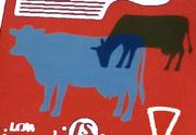 30th Mar 2021 - dairy cows