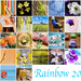 EXTRAS:  Rainbow 2021