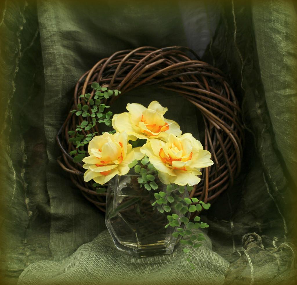 Spring Daffodils  by wendyfrost