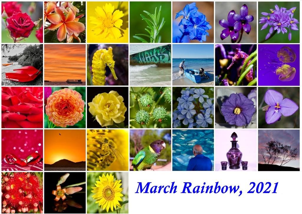 Rainbow, 2021 by merrelyn