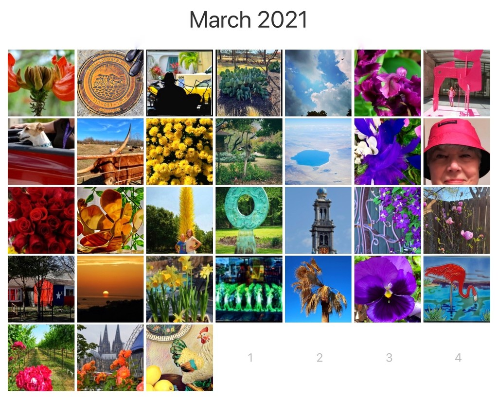 Rainbow month 2021 by louannwarren