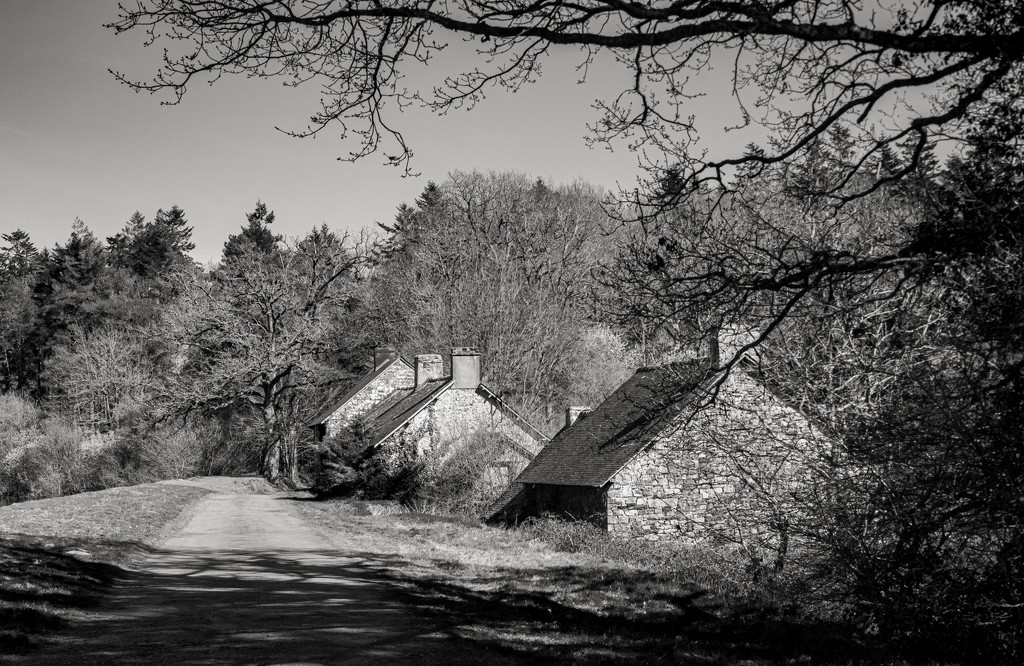 Abandoned Cottages by vignouse