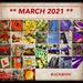 Rainbow 2021