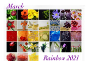 31st Mar 2021 - Rainbow 2021 Calendar