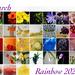 Rainbow 2021 Calendar