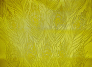 31st Mar 2021 - Yellow Feathers