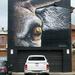 Street Art - Kristi Bain  by onewing