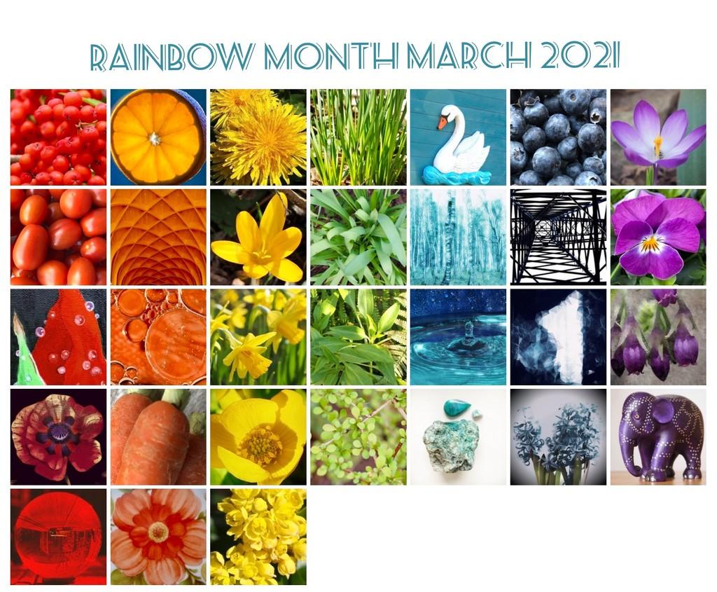 Rainbow 2021 by jacqbb