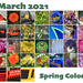 March Spring Colors