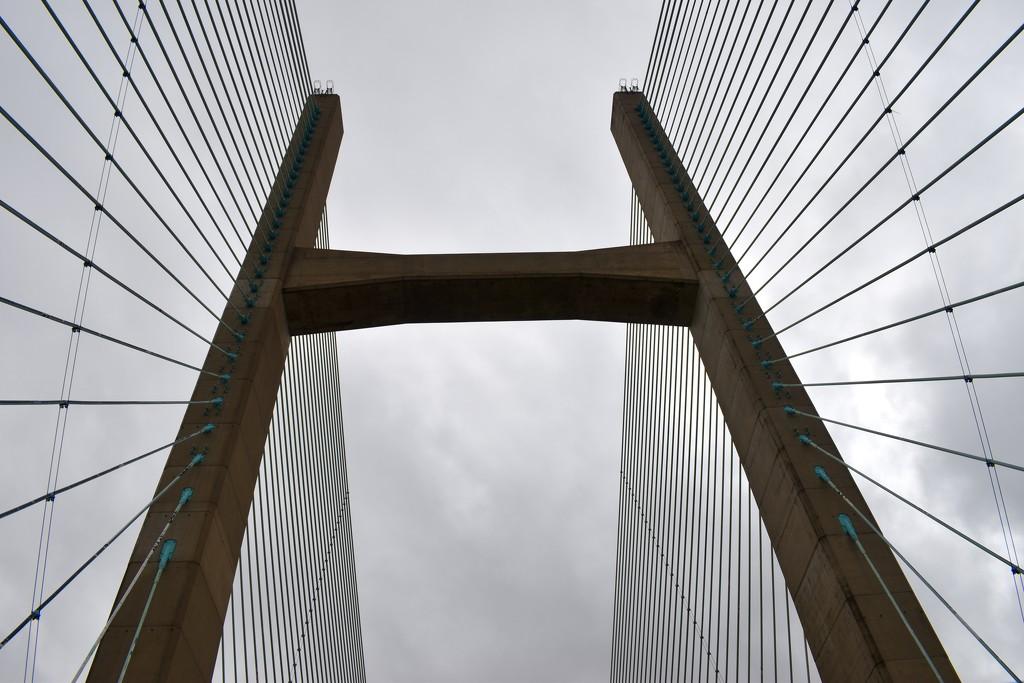 Bridges by paulbarratt