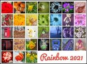 1st Apr 2021 - My rainbow!