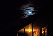 27th Mar 2021 - Moonlight Home #1 ( Definitely BOB)