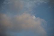 31st Mar 2021 - Shy Moon - 6.43am