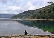 30th Mar 2021 - Lake Waikaremoana