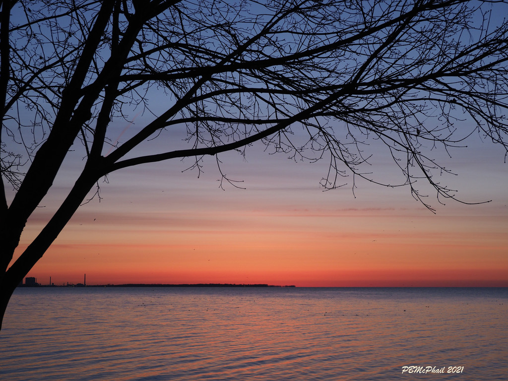 Predawn Light by selkie