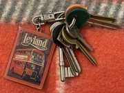 3rd Apr 2021 - Have you seen my keys anywhere?