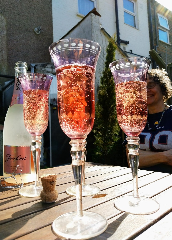 Pink cava by boxplayer